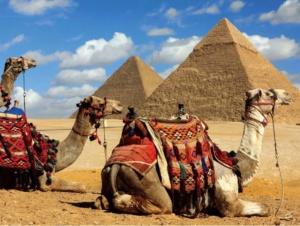 Quebra-cabeça emoldurado 500 peças Pirâmides do Egito